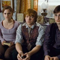 Test película Harry Potter