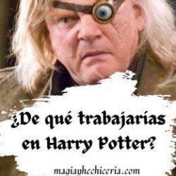 ¿De qué trabajarías en Harry Potter_