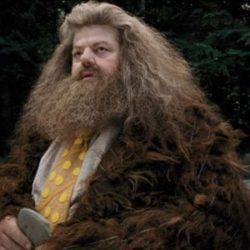 Test: ¿Te acuerdas de las mascotas de Hagrid?