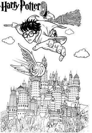 harry potter quidditch pintar