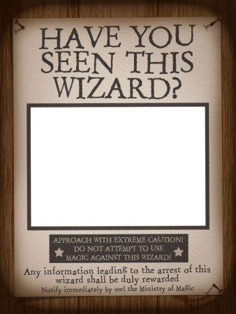 se busca harry potter