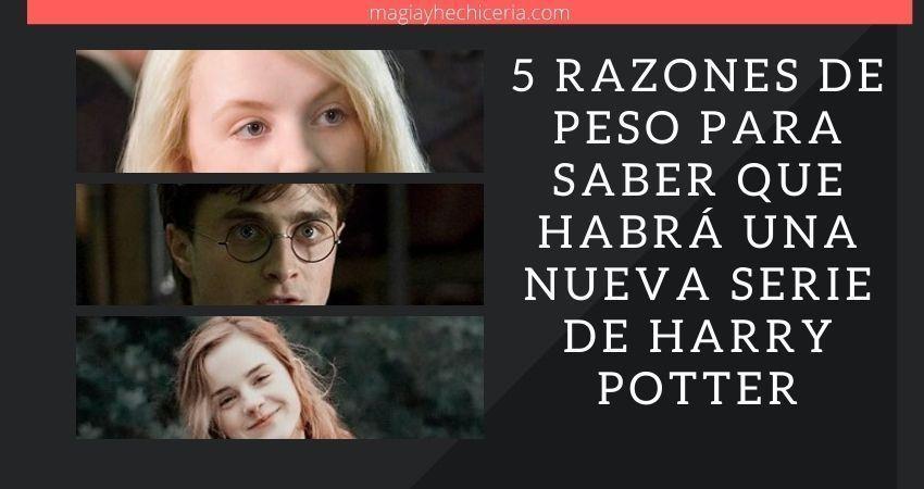Pruebas que demuestran que habrá una serie de Harry Potter