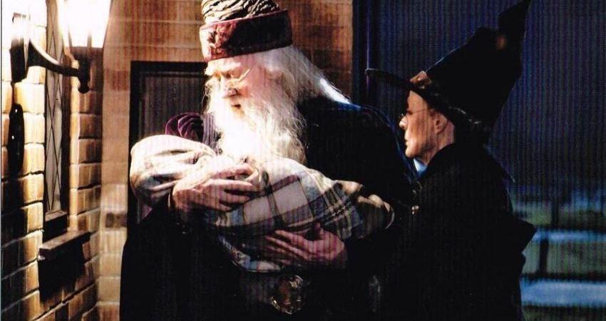Qué hacía Dumbledore después de la muerte de Lily y James